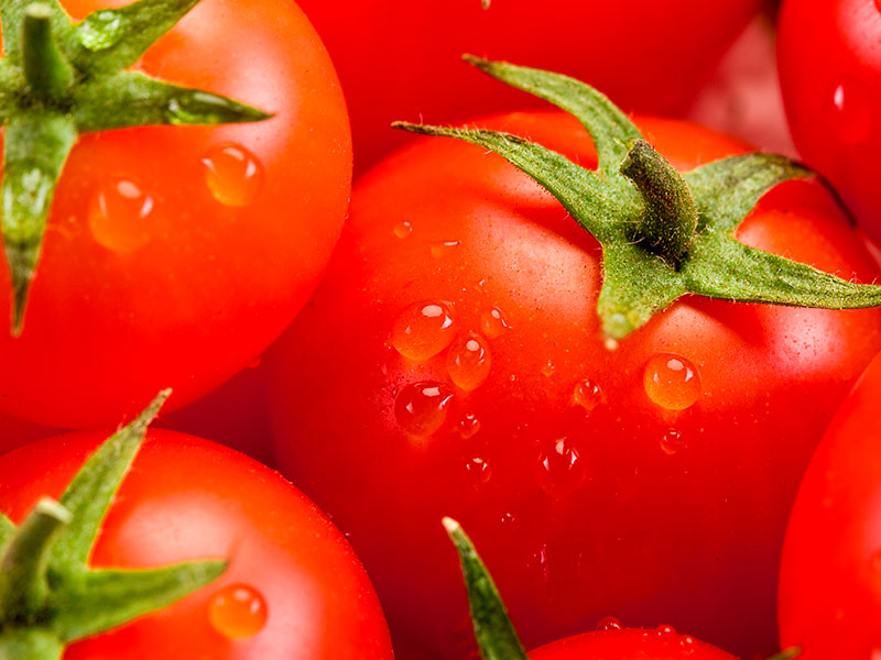enjoy-tomaten